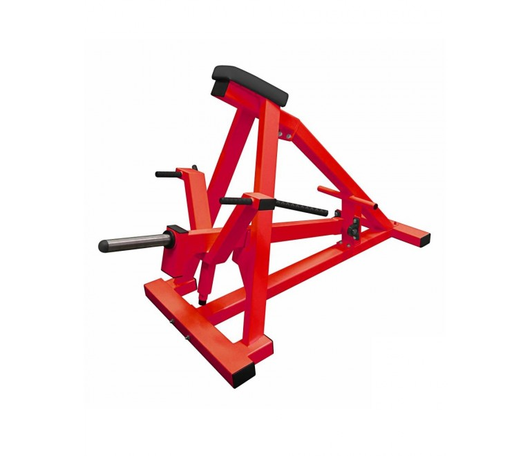 Plate loaded T bar row with...