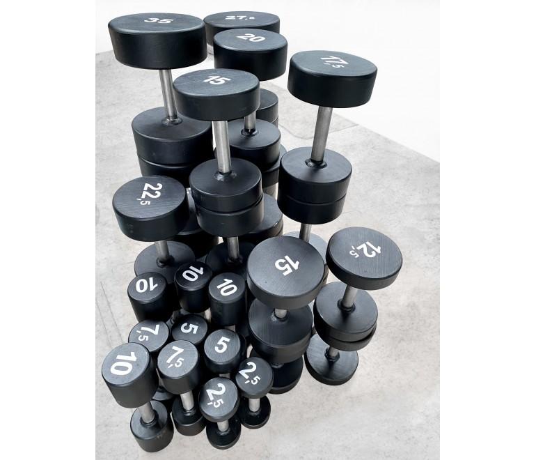 Dumbbells 12,5 -100kg (Z15)