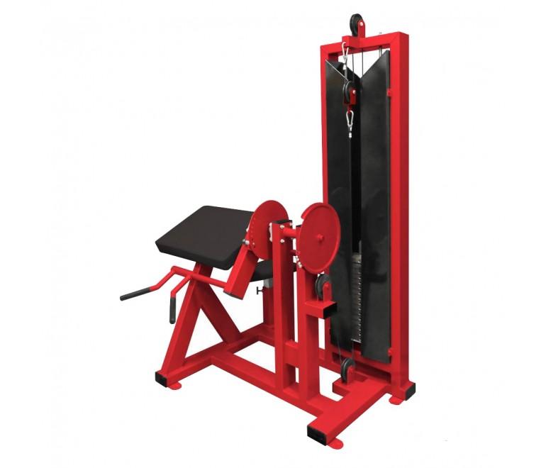 Biceps Curl Machine (F3X)