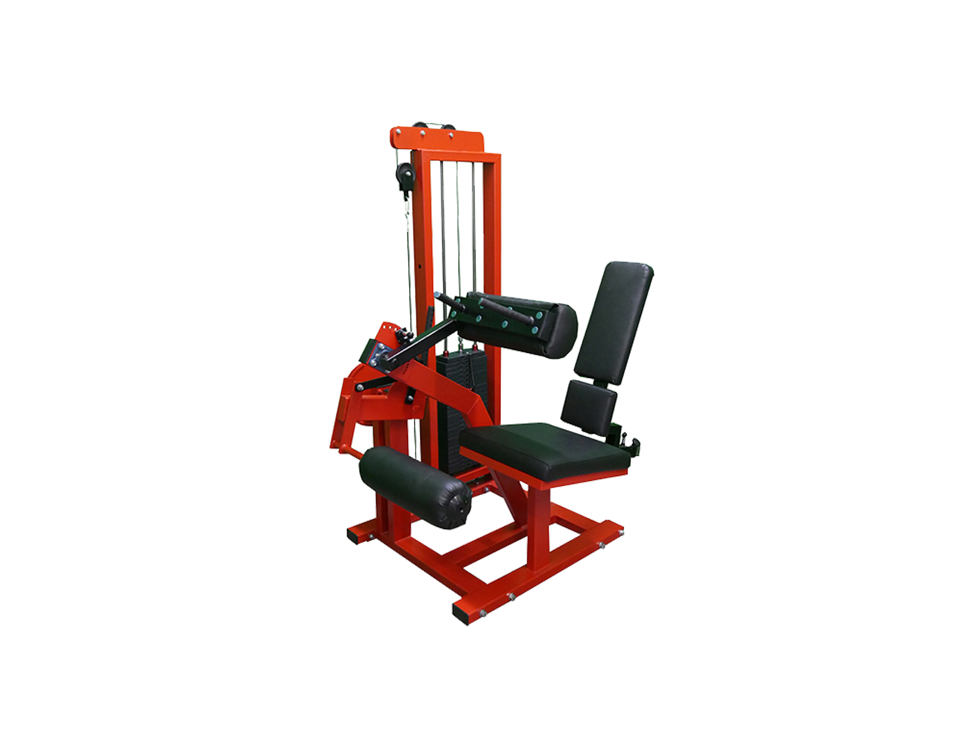 Leg curl machine (M8XX3)