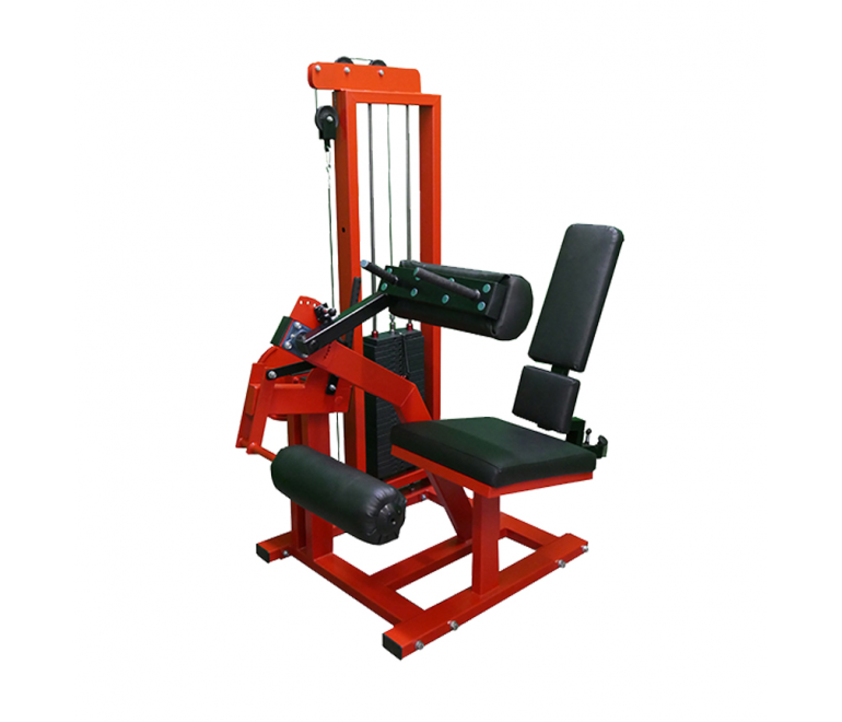 Leg curl machine (M8XX3)